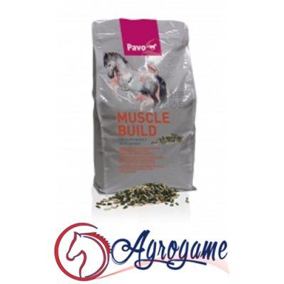 Comprar Suplemento alimenticio Pavo MuscleBuild | Rápido desarrollo muscular Merida
