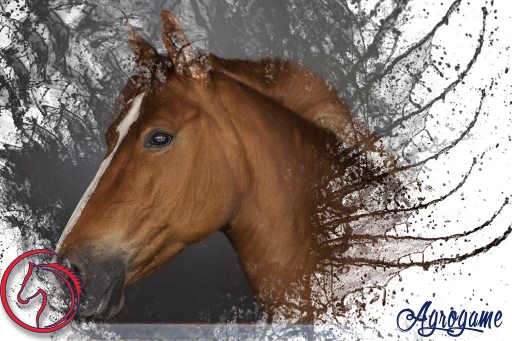 que comen caballos